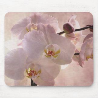 Mousepad d'orchidée tapis de souris