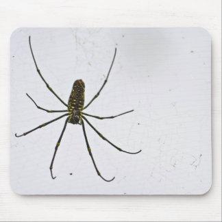 Mousepad en bois géant de coutume d'araignée tapis de souris