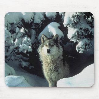 Mousepad hivernal de loup tapis de souris