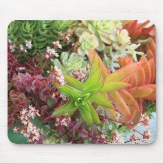 Mousepad mélangé de succulents tapis de souris
