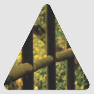mousse sur la barrière sticker triangulaire