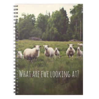 Moutons blancs et agneaux pelucheux mignons en carnet