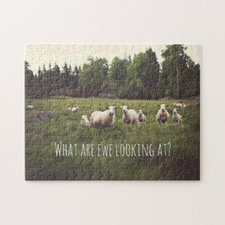 Moutons blancs et agneaux pelucheux mignons en puzzle