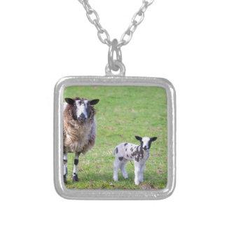 Moutons de mère avec deux agneaux nouveau-nés au pendentif carré