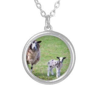 Moutons de mère avec deux agneaux nouveau-nés au pendentif rond