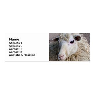 Moutons drôles