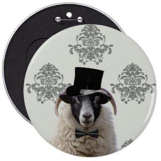 Moutons drôles de jeune marié dans le chapeau supé badges