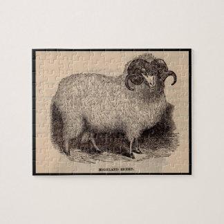 Moutons du 19ème siècle de montagne d'impression puzzle