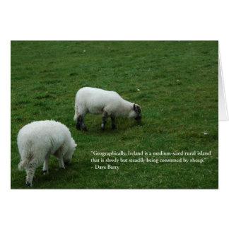 Moutons irlandais carte de vœux