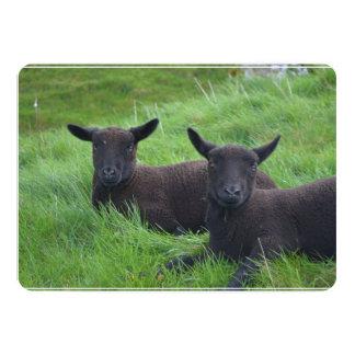 Moutons noirs carton d'invitation  12,7 cm x 17,78 cm