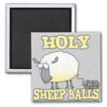 moutons se démêlants drôles de fil de boules saint aimants