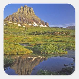 Mt Clements se reflète dans la petite piscine chez Sticker Carré