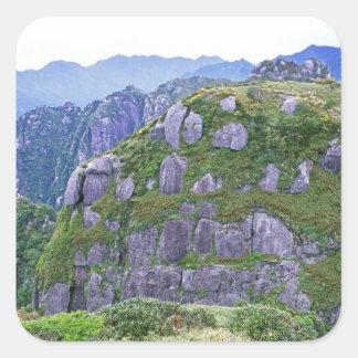 Mt. Nagata, Yakushima, Kagoshima, Japon Sticker Carré