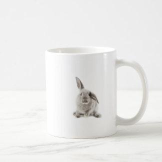 Mug 2 lapins