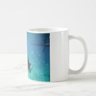 Mug Alimentation de requins de baleine