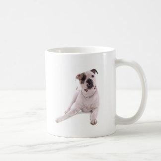 Mug american bulldog