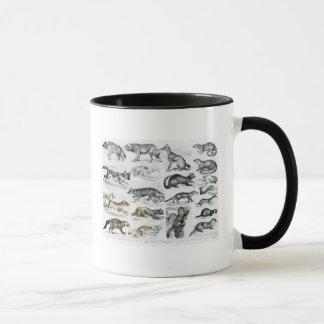 Mug Animaux carnivores