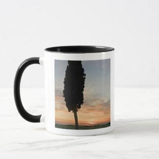 Mug Arbre au crépuscule près du d'Orcia de San