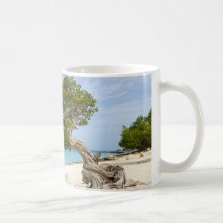 Mug Arbre de Divi Divi sur l'île des Caraïbes d'Aruba