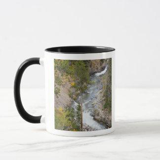 Mug Arbres 14 de rivière et de tremble de Provo