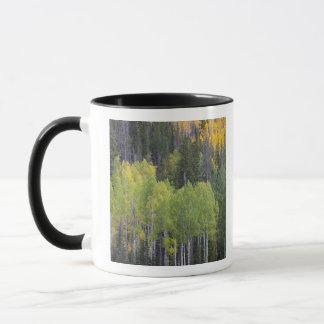 Mug Arbres 2 de rivière et de tremble de Provo