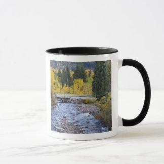 Mug Arbres 8 de rivière et de tremble de Provo