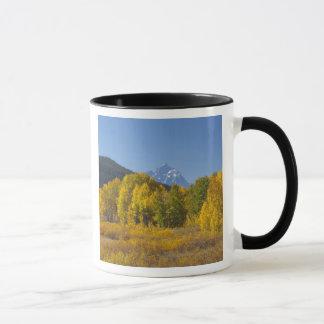Mug Arbres d'Aspen avec la gamme de montagne de Teton