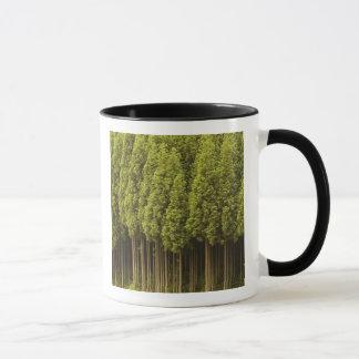 Mug Arbres de cèdre de Koya Sugi