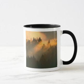 Mug Arbres de séquoia en brouillard côtier, le comté