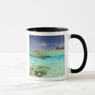 Mug Atoll du sud de Huvadhoo, Maldives du sud,