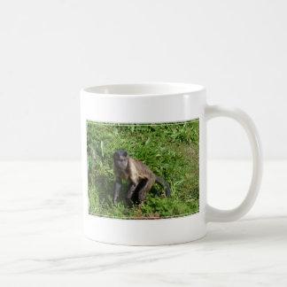 Mug Attaque à main armée de singe de capucin pour