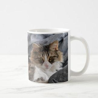 Mug Attaquez le faon velu d'ami/long chat gris de