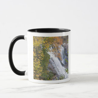 Mug Automnes chauves de rivière