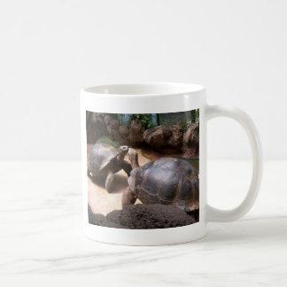 Mug Baiser géant de tortue
