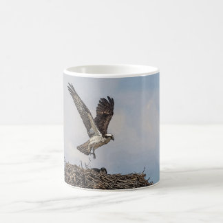 Mug Balbuzard dans un nid