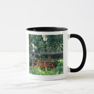 Mug Banc