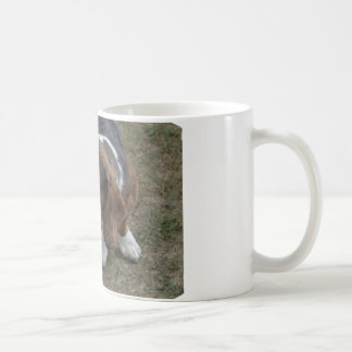 Mug Basset Hound adorable