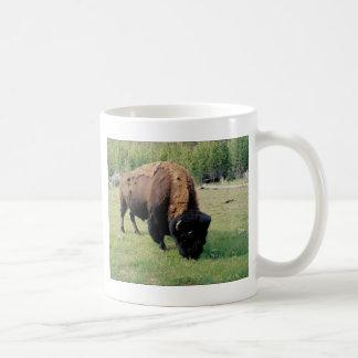 Mug Bison dans Yellowstone
