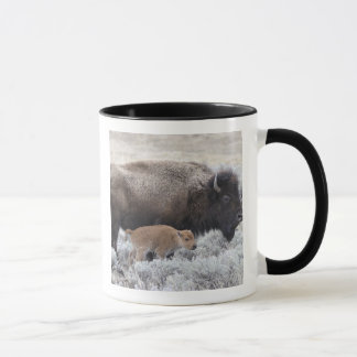 Mug Bison de vache et de veau, Yellowstone 2