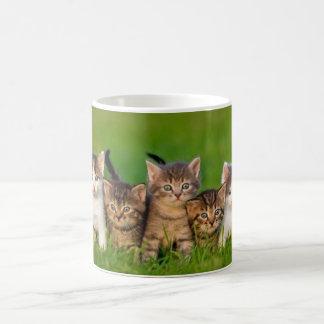 mug blanc chatons