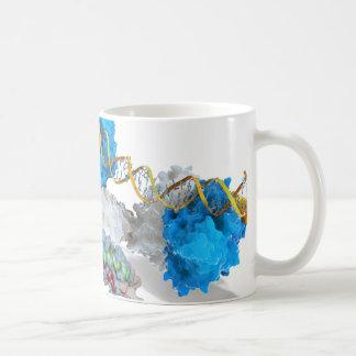 Mug C-MYC et entaille liant l'ADN