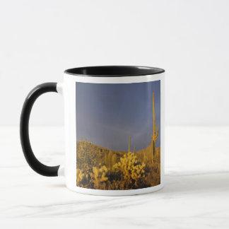 Mug cactus de saguaro, gigantea de Carnegiea, et