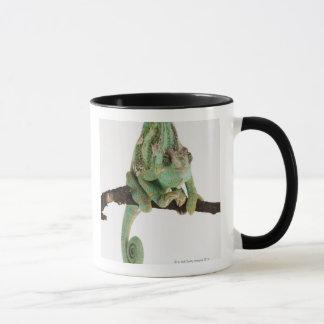 Mug Caméléon hardiment coloré avec la caractéristique