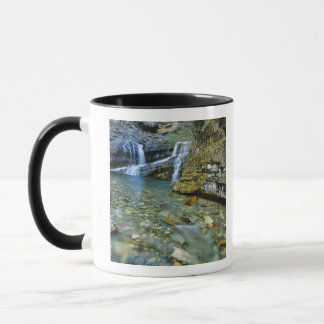 Mug Cameron tombe en parc national de lacs Waterton