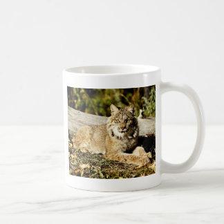 Mug Canadien Lynx