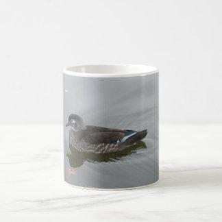Mug Canard en bois femelle