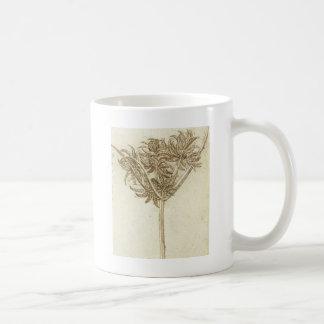 Mug Carex