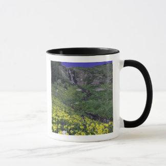 Mug Cascade et fleurs sauvages dans le pré alpin,