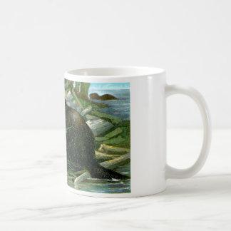 Mug Castor