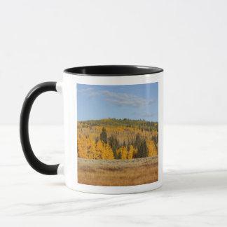 Mug Cavité de Lambert, arbres de tremble